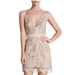 Dress the Population • Ava Lace Dress